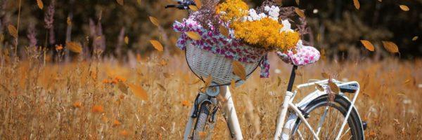 Rost entfernen am Fahrrad